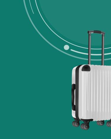 bagagem de mão ilustrada
